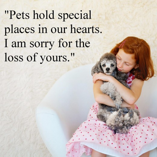 Sympathy Messages For Pet Loss Pet Loss Sayings Wishes Messages