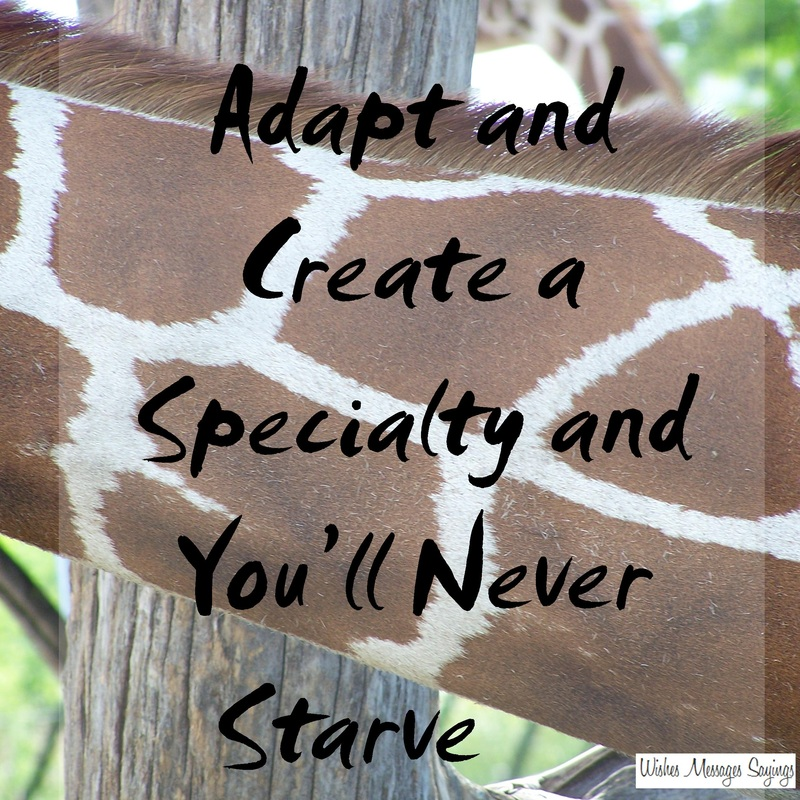 Zebra Inspirational Quote